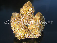 XL POWERFUL STARBRARY PURE 24KT GOLD AURA SPIRIT CACTUS QUARTZ CRYSTAL POINT!