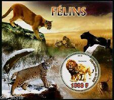 Wild Cats mnh souvenir sheet and minisheet mnh 2012 Mali Lion Lynx Puma Panther