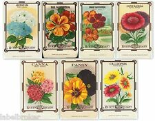 7 VINTAGE SEED PACKET LOT NOS C1910 FLOWERS GARDEN LITHOGRAPH GENERAL STORE