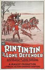 The Lone Defender - Cliffhanger Movie Serial DVD  Rin Tin Tin  Walter Miller