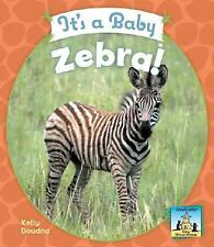 It's a Baby Zebra! (Baby African Animals)-ExLibrary