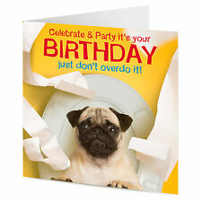 Funny Pug dog celebrate & party it's your Birthday greetings card