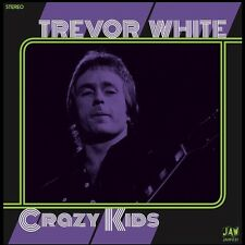 "TREVOR WHITE Crazy Kids 7"" 45 JOOK SPARKS Junkshop Glam Power Pop 2016 reissue"