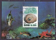 Korea 1994 - Schelpen / Shells / Muschelschale