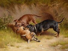 PAINTING ANIMAL DACHSHUND DOG FOX REICHERT HUNTING ART PRINT LAH380A