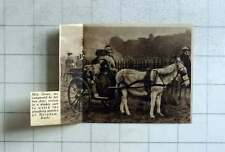 1936 Mrs Grace, With Dogs Arrives In Donkey Cart Ploughing Match Burnham Bucks