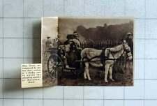 1936 Mrs Grace, With Dogs Arrives In Donkey Cart Ploughing Match Burnham Bucks