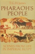 NEW Pharaoh's People Scenes Ancient Egypt Daily Life Work Murals Houses Food Law