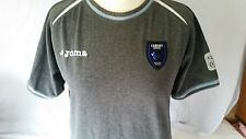Cardiff City Grey Light Blue Trim White Strip Crew Neck Shirt Joma Boys Sz 9 10