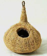 Small birds Love birds Free sparrows coconut fiber nest