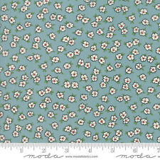 MODA Fabric ~ HOP, SKIP AND A JUMP! ~ American Jane (21705 17) by the 1/2 yard