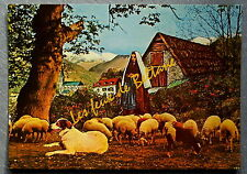 LOURDES BARTRES BERNADETTE GARDANT LES MOUTONS   postcard