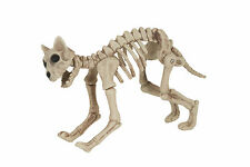 Large Scary Skeleton CAT 40 cm Long Halloween Party Decoration Prop Fancy Dress