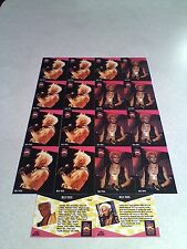 *****Billy Idol*****  Lot of 31 cards.....3 DIFFERENT