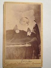 Dresden - kleines Kind - Baby - Portrait - alte Reproduktion / CDV