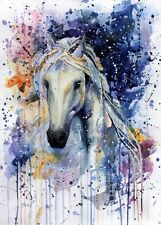 HORSE WATERCOLOUR ART IMAGE A4 Poster Laminated Gloss Print