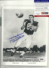 PSA AUTHENTICATED MIKE DITKA Signed Auto 8x10 vintage Photo Auutograph BEARS