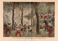 TOULON HOMMES TROUPE ETEIGNANT INCENDIE DE FORET CHAINE MAURES IMAGE 1906 PRINT