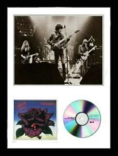 Thin Lizzy / Limited Edition / Framed / Photo & CD Presentation / Black Rose