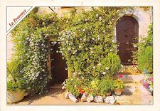 B50202 Provence typical house    france