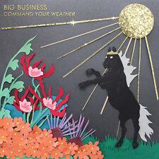 Big Business - Command Your Weather LP - sealed w/ DL - Karp Melvins