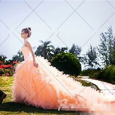 Champagne Long Train Wedding Dress With Tail Quinceanera Prom Pageant Ball Gown