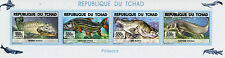 Chad Tchad 2015 MNH Fishes of Lake Chad 4v M/S Fish Poissons