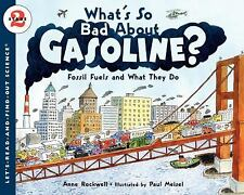 What's So Bad About Gasoline?: Fossil Fuels and What They Do (Let's-Re-ExLibrary