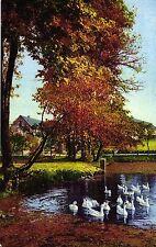 Teich, Gänse, Dorf, Künstlerkarte, 1931