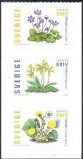 Svezia 2003 Fiori/Piante/NATURA/Primula/Farfara 3v S/un riquadro bklt (s3829)