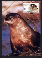 DDR 3110  Maximumkarte Vom Aussterben bedrohte Tiere Fischotter