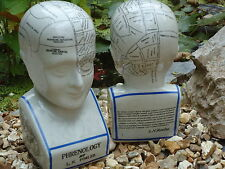 PHRENOLOGY HEAD LARGE SIZE L.N FOWLER STYLE /PALMISTRY /SKULL  / DOCTOR