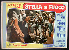 CINEMA-fotobusta STELLA DI FUOCO elvis presley, SIEGEL