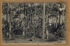 Cpa Landes - vue sur la forêt résinier chasseur wn0799