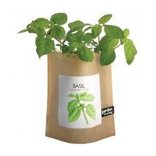 Potting Shed Organic Basil Garden-In-A-Bag Planter Seed Kit Growing DIY Gift