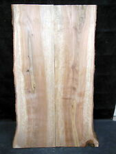 "S-64_ Gorgeous Book Matched Spalted Curly Yellow Birch Slab 42""_ maple"