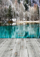 Lake Scenic Vinyl Photo Backdrop Winter Photography Backgrounds Wood Floor 5x7ft