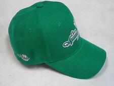 Los Aguacateros de Michoacan  Gorra en Color Verde. Aguacateros Hat.