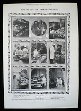 PRODUCTION OF PATE DE FOIE GRAS FOOD PRODUCT 1pp PHOTO ARTICLE 1906