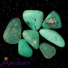*ONE* AUSTRALIAN CHRYSOPRASE AAA Grade Natural Tumbled Stone Approx 20-30mm Flat