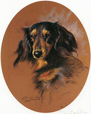 DACHSHUND LONGHAIRED LONG HAIRED DAXI DOG FINE ART LIMITED EDITION PRINT