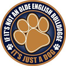 """IF NOT AN OLDE ENGLISH BULLDOGGE JUST A DOG 5"""" STICKER"""