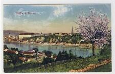 AK Linz a. d. Donau, Frühlingsblüte, 1918