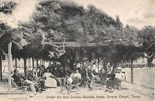 1910 Under the Salt Cedars Seaside Hotel Corpus Christi TX post card