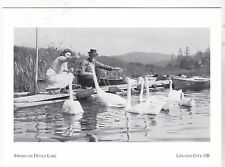 "*Postcard-""Couple Feeding The Swans on Devils Lake""-   Lincoln City, Oregon (#78"