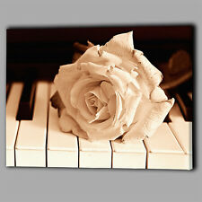 ROSA Bianca Look Vintage PIANOFORTE CANVAS A2 Grande Wall Art Picture REGALO FIORE GRANDE