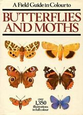 Field Guide in Colour to Butterflies and Moths By Ivo Novak
