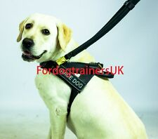 Best Black Leather Guide Dog Harness, Assistance Dog Leather Harness