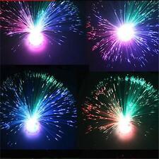 LED Couleur Changeante Fibre Optique Lampe Veilleuse Plein de Maison Fête Déco F