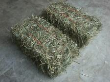 Lot of 4 Mini 12 Inch GRASS HAY Bales ... FOOT LONG!!! ..Great for Rabbit or Pet